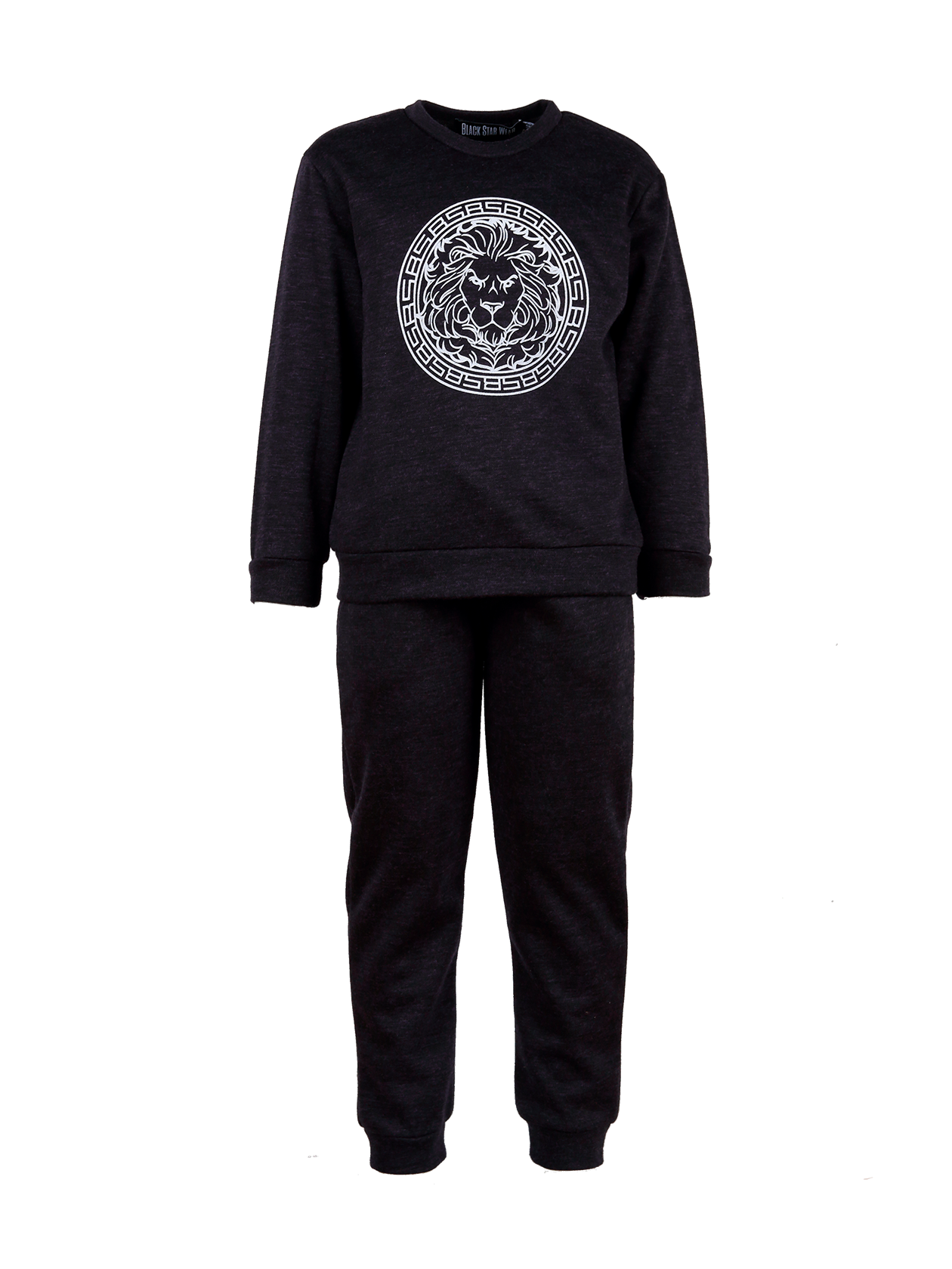 Kids sport suit Logo Black StarKids sweatshirt and sweatpants set by Black Star Wear. Sweatshirt with o-neck, cuffs, big print with lions head on the chest. Sweatpants with side pockets. Regular fit, natural cotton. Avaliable in royal purple and gray.<br><br>size: 9-10 years<br>color: Purple<br>gender: unisex